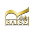 RAISE(レイズ)の公式ロゴ